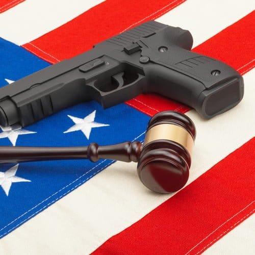 gun rights